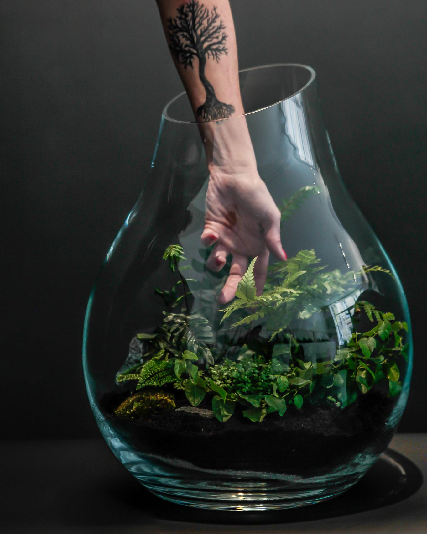 Organic_terrarium-2
